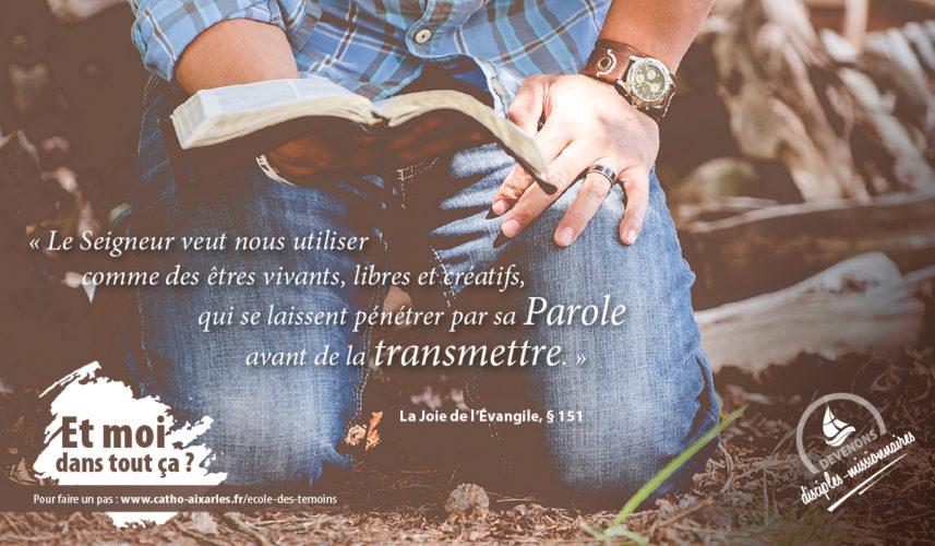 Ecole des témoins - Joie de l'Evangile (10)